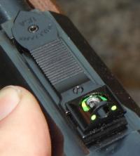 The Field-Grade Combination Gun [Polecat in a Poke]